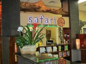 safari-front-desk-lo-res-300x225